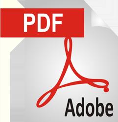 pdf_icon_large